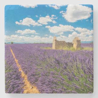 Ruin in Lavender Field, France Stone Coaster