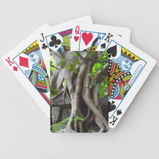 Ruins of a temple lost in a lush jungle bicycle playing cards