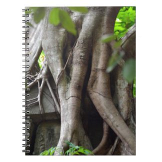 Ruins of a temple lost in a lush jungle notebooks