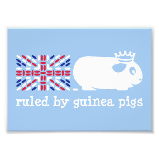 Ruled by Guinea Pigs Photo Art