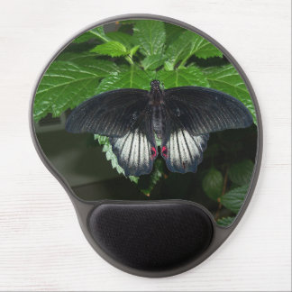 Rumanzovia Swallowtail - Male Gel Mouse Pad