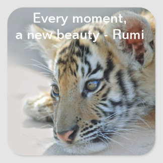 Rumi Beauty Square Sticker