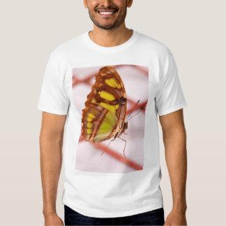run away t-shirt