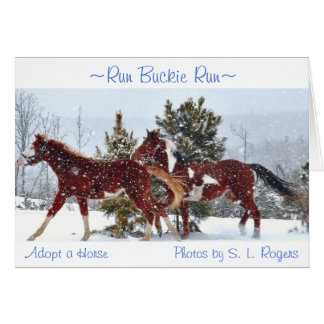 """Run Buckie Run"" Card"