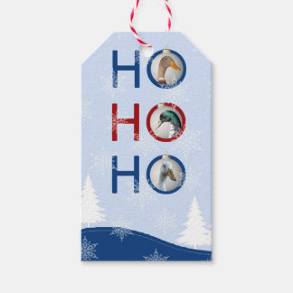 Run ducks in Christmas tree balls Gift Tags