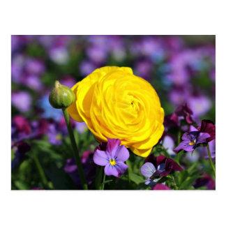 Run flower postcard