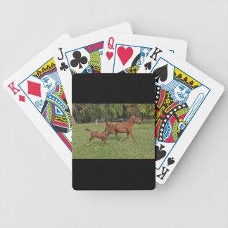 Running Arabian Horses - Mom and Foal Poker Deck