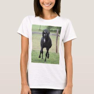 running black Arabian stallion on t-shirt