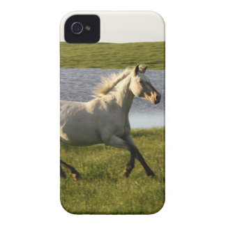 Running Free iPhone 4 Cover