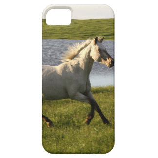 Running Free iPhone 5 Cover