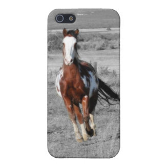 Running Free Ipod Case Case For The iPhone 5