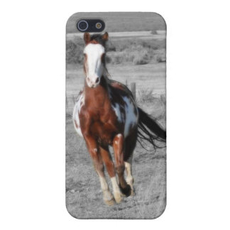 Running Free Ipod Case Cover For iPhone 5/5S