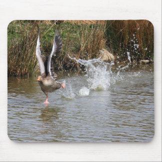 Running Greylag Goose Mousepads