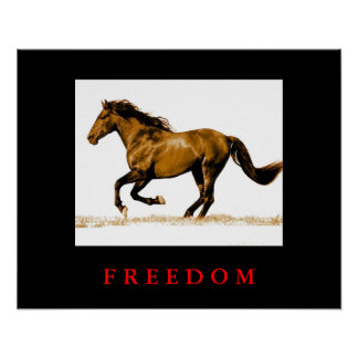 Running Horse Motivational Freedom Poster