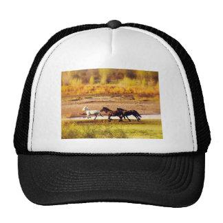 Running Horses Cap