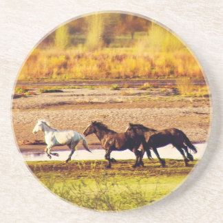 Running Horses Coaster