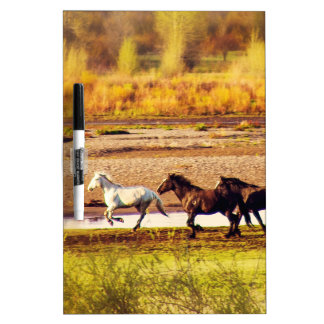 Running Horses Dry Erase Boards