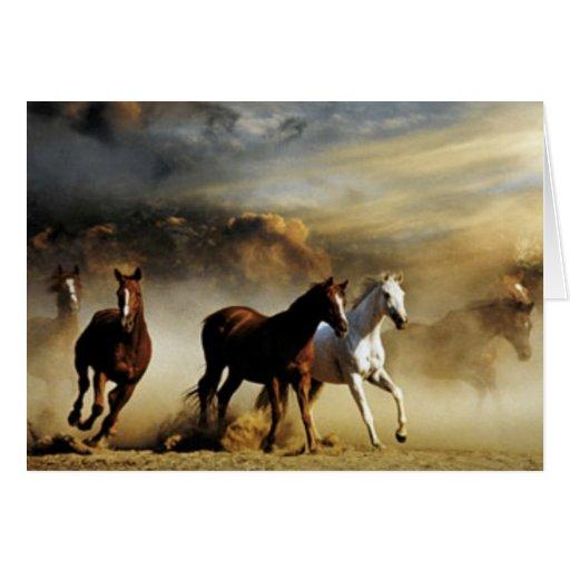 Running Horses Greeting Card