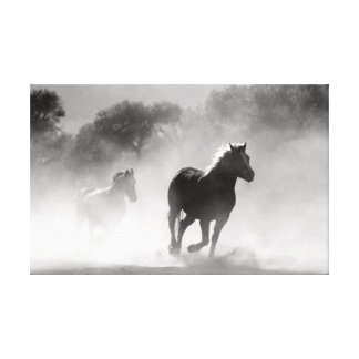 Running Horses in Black and White. Canvas Print