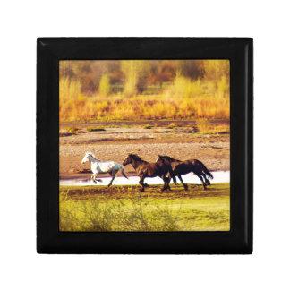 Running Horses Small Square Gift Box