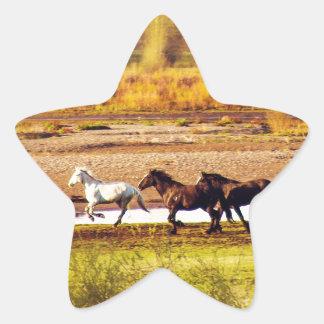 Running Horses Star Sticker