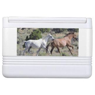 Running Mustang Cooler