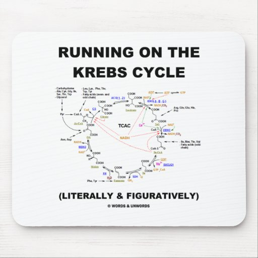 Running On The Krebs Cycle (Science Humor) Mouse Pads