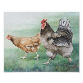Running Rooster & Hen Photo Print