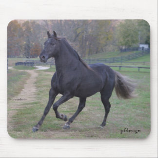 Running Stallion Mouse Pad