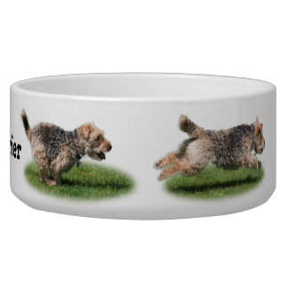 Running Welsh Terrier Dog Bowl
