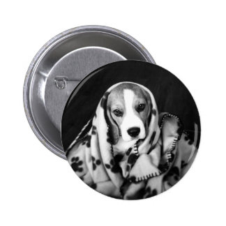 Rupert the Beagle Puppy Dog Badge