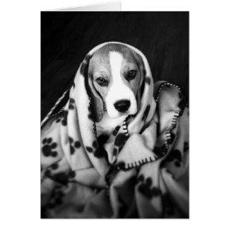 Rupert the Beagle Puppy Dog Blank Card