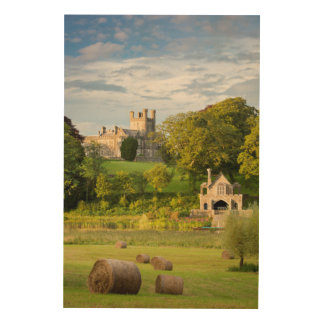 Rural Crom Castle Landscape Wood Print