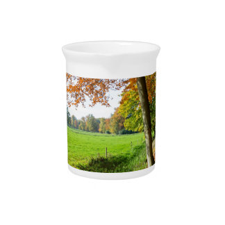 Rural fall landscape with leaves and green pasture drink pitchers