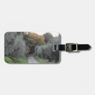 Rural landscape with asphalt road in the autumn luggage tag