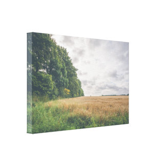 Rural landscape with fields and trees canvas print