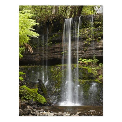 Russell Falls, Mount Field National Park, Postcards