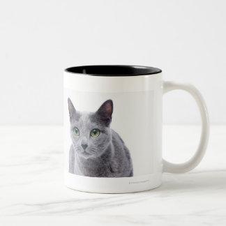 Russian Blue Cat Two-Tone Coffee Mug
