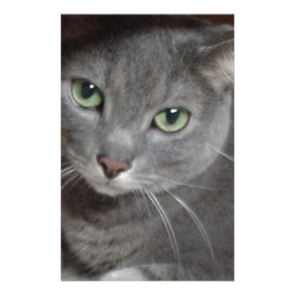 Russian Blue Gray Cat Custom Stationery