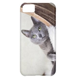 Russian Blue iPhone 5C Case