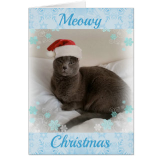 Russian Blue. Meowy Christmas. Card