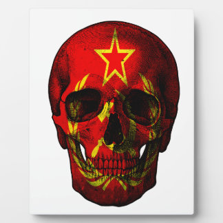 Russian flag skull plaque