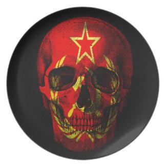Russian flag skull plate