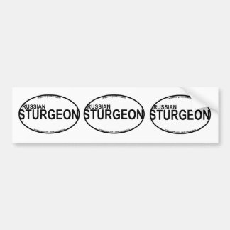 Russian Sturgeon Euro Stickers Bumper Sticker