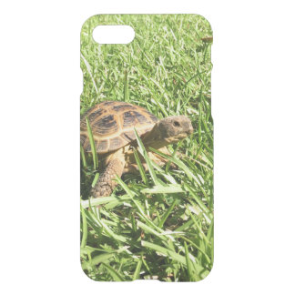 Russian tortoise iPhone 8/7 case