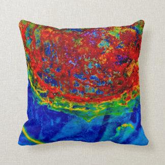 """""""Rust On Glass"""" JTG Art Pillow"""