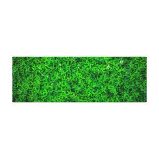 Rustic Amazing Greenery. Canvas Print