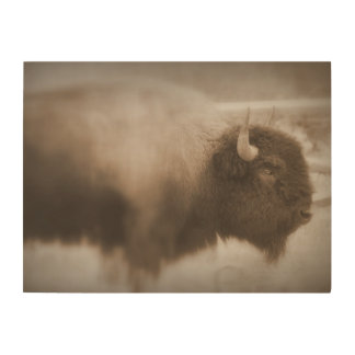 Rustic American Buffalo Wood Wall Art