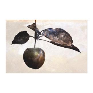 Rustic apple canvas print