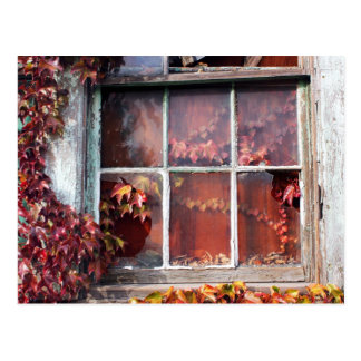 Rustic Autumn Vines Against An Old Building Card Postcard
